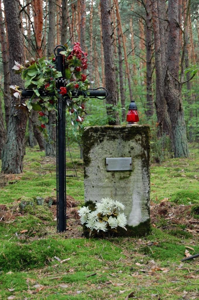 Pomnik Roman Sajdak